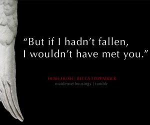fallen angel, nora, and hush hush image