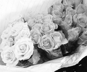 black and white, flowers, and rose image