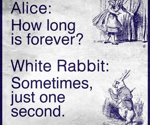 alice, forever, and rabbit image