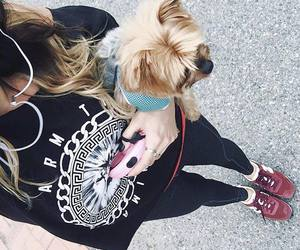 dog, fashion, and ootd image