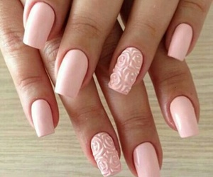color, nails, and rose image