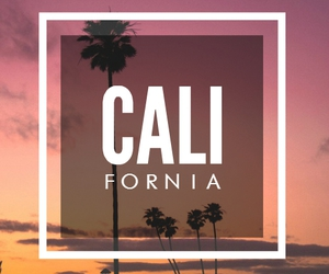 california, iphone, and palm trees image