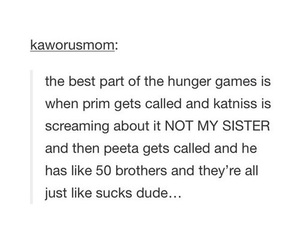 funny, hunger games, and katniss everdeen image