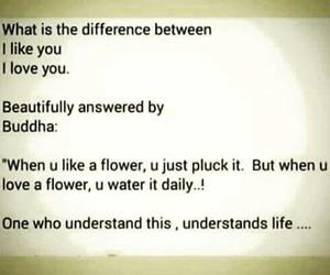 beautiful, Buddha, and love image