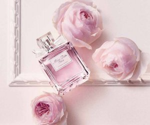 pink, miss dior, and rose image
