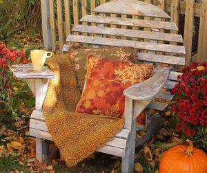 chair, leaves, and pillows image
