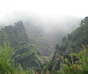 adventure, azores, and fog image