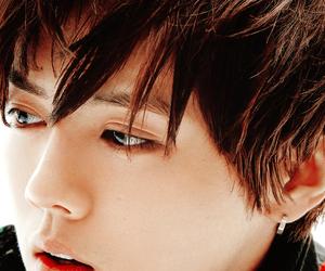 luhan, exo, and lay image