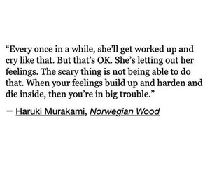 feelings, haruki murakami, and norwegian wood image
