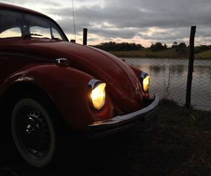 beetle, car, and cars image