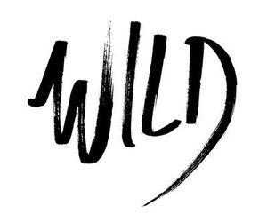 wild, quotes, and black image