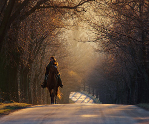 horse, girl, and road image