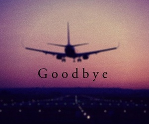 goodbye, travel, and airplane image