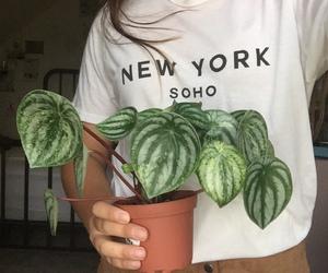 plants, aesthetic, and girl image