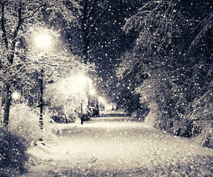 lights, winter, and love image
