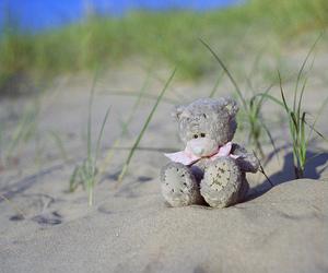 adorable, beach, and teddybear image