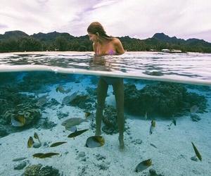 girl, summer, and fish image