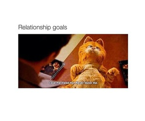 funny, garfield, and goals image