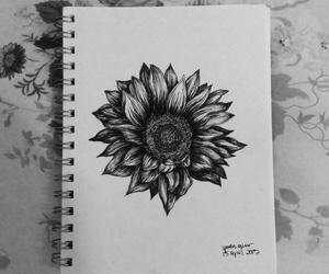 black&white, drawing, and sunflower image