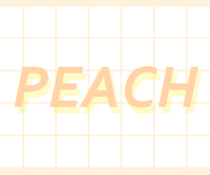 peach, aesthetic, and grid image