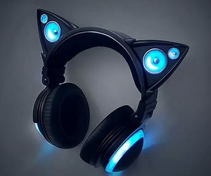 cat, headphones, and music image