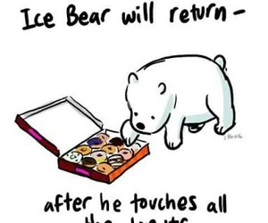 ice bear and cute image