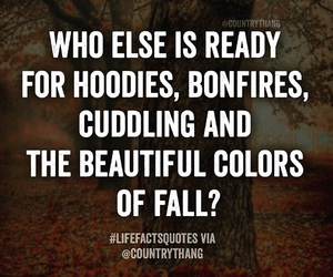 autumn, cuddling, and fall image