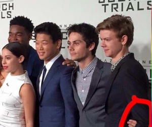 thomas brodie sangster and the scorch trials image