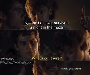 newt, thomas, and fangirls image