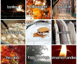 fall, autumn, and sweaters image