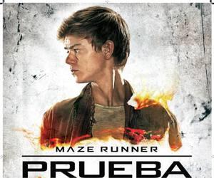 maze, movie, and thomas brodie sangster image