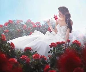 wedding drees image
