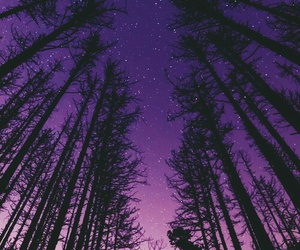 purple, nature, and sky image