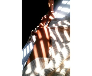 bed, morning, and sun image