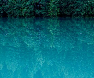 water, blue, and tree image