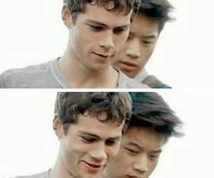 boy, thomas, and the maze runner image