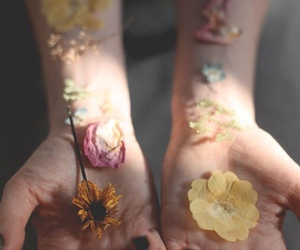 flowers, hands, and indie image