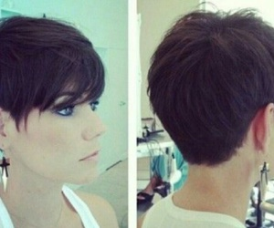 hair, short, and shorthair image