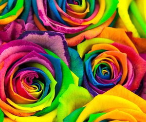 rainbow, colorful, and flowers image