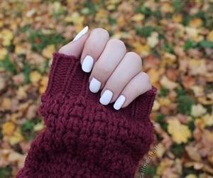 nails, autumn, and tumblr image