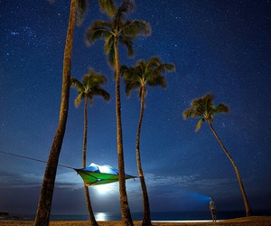 night, palm trees, and beach image