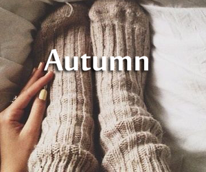 autumn, cold, and nail image