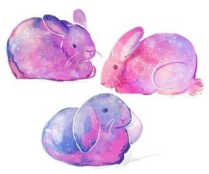bunny, galaxy, and rabbit image