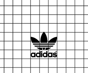 adidas and grid image