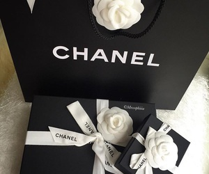 classy, chanel, and fashion image