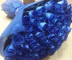 blue, flowers, and rose image