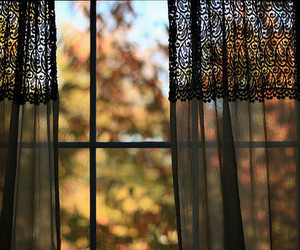 curtains, fall, and window image
