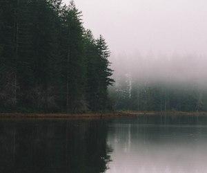 lake, nature, and trees image