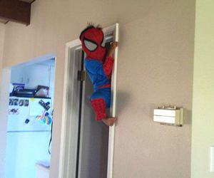 funny, babysitting, and spiderman image