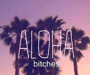 Aloha, bitch, and summer image